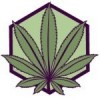 New Leaf CannaCenter Logo