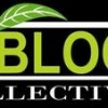 US Bloom Collective Logo